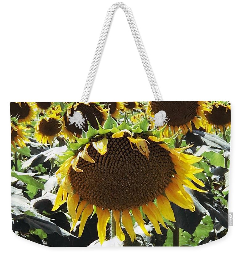 Sunflower Weekender Tote Bag featuring the photograph Sunflowers by Anita Streich