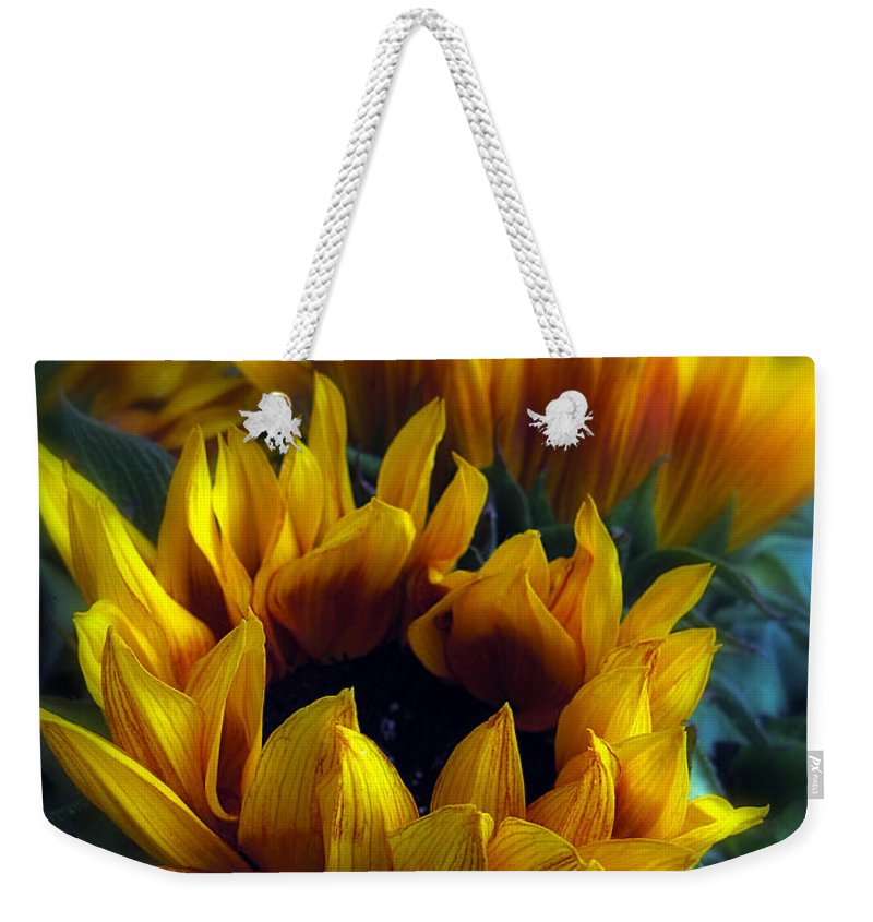 Flowers Weekender Tote Bag featuring the photograph Sunflowers by Jessica Jenney
