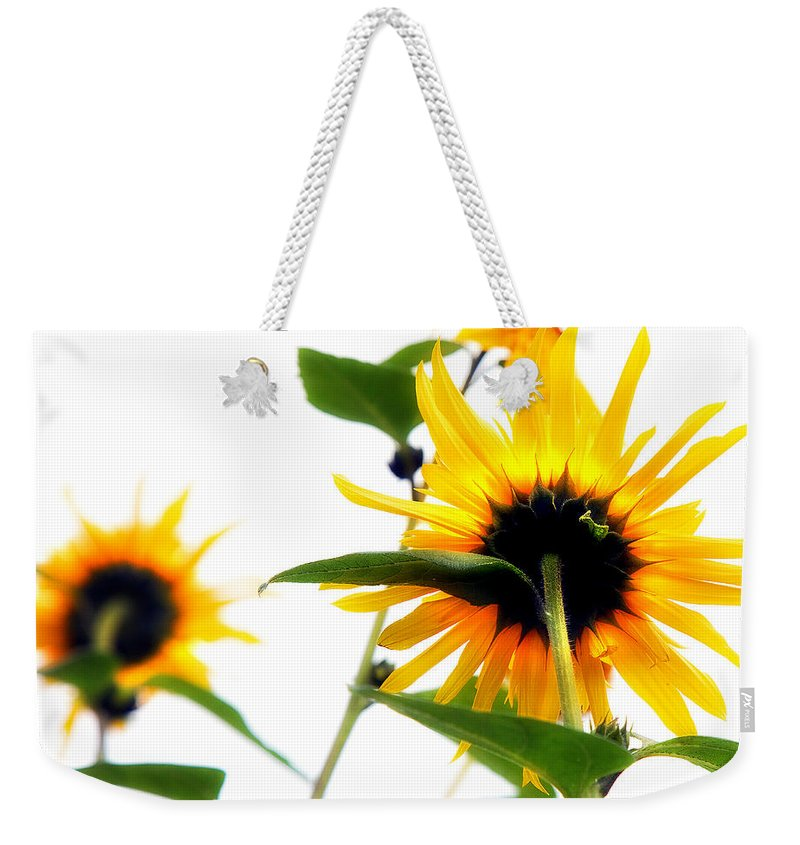 Sunflowers Weekender Tote Bag featuring the photograph Sunflowers by Mal Bray