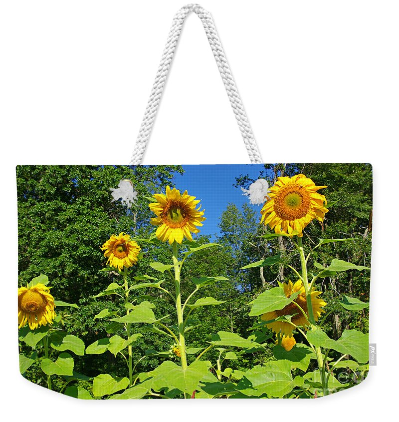 Sunflower Weekender Tote Bag featuring the photograph Sunflowers by Zal Latzkovich
