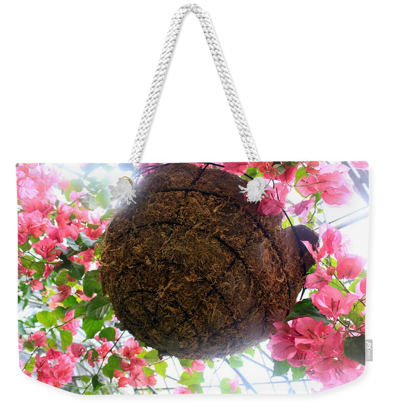 Flower Weekender Tote Bag featuring the photograph Sunlight by Munir Alawi