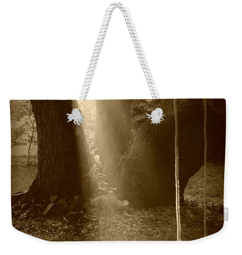 Sepia Weekender Tote Bag featuring the photograph Sunlight On Swing - Sepia by Carol Groenen