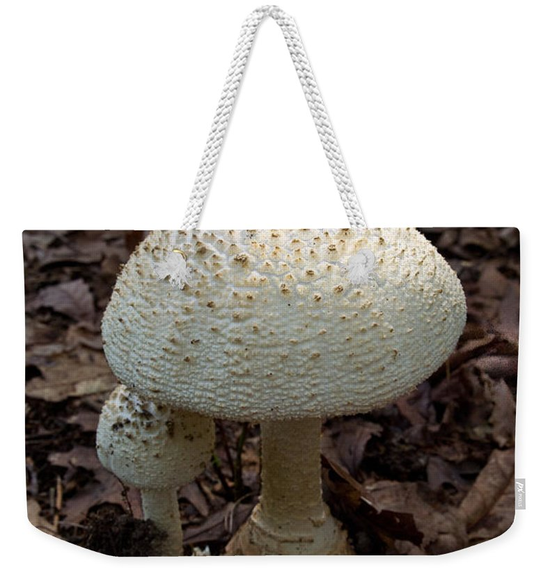 Cumberland Weekender Tote Bag featuring the photograph Sunlight On The Cap by Douglas Barnett