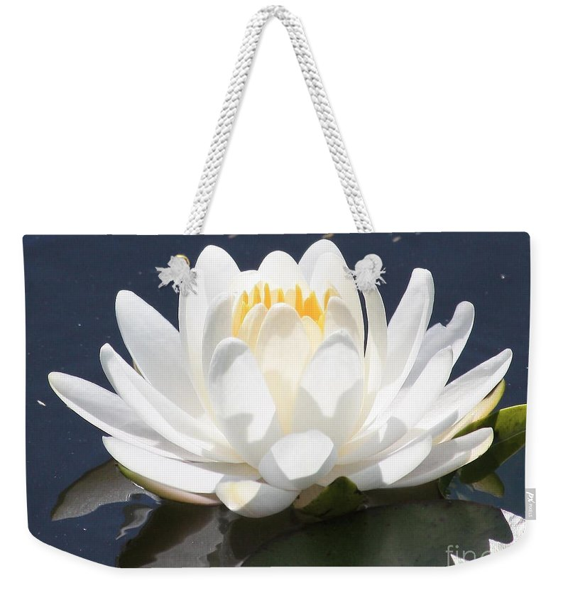 Flower Weekender Tote Bag featuring the photograph Sunlight On Water Lily by Carol Groenen