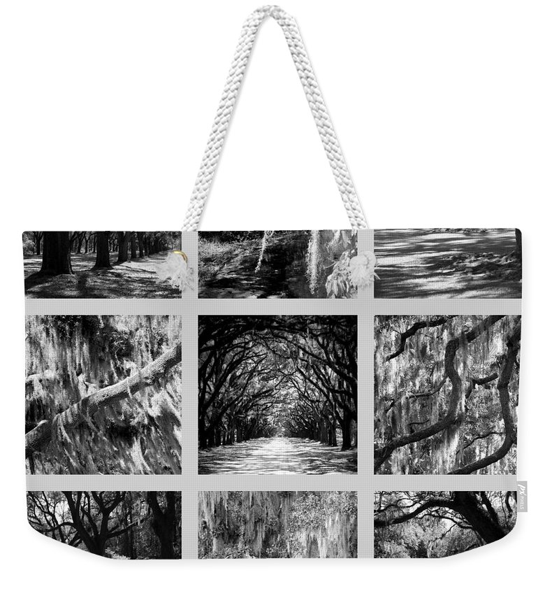 Live Oaks Weekender Tote Bag featuring the photograph Sunlight Through Live Oaks Collage by Carol Groenen