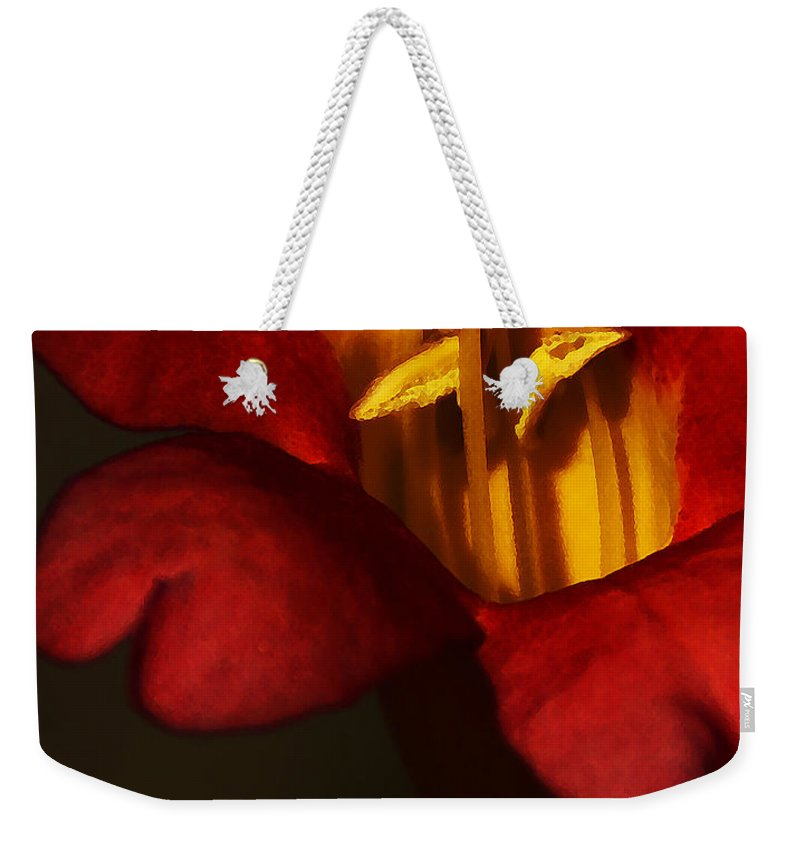 Flower Weekender Tote Bag featuring the photograph Sunlit Attraction by Linda Shafer