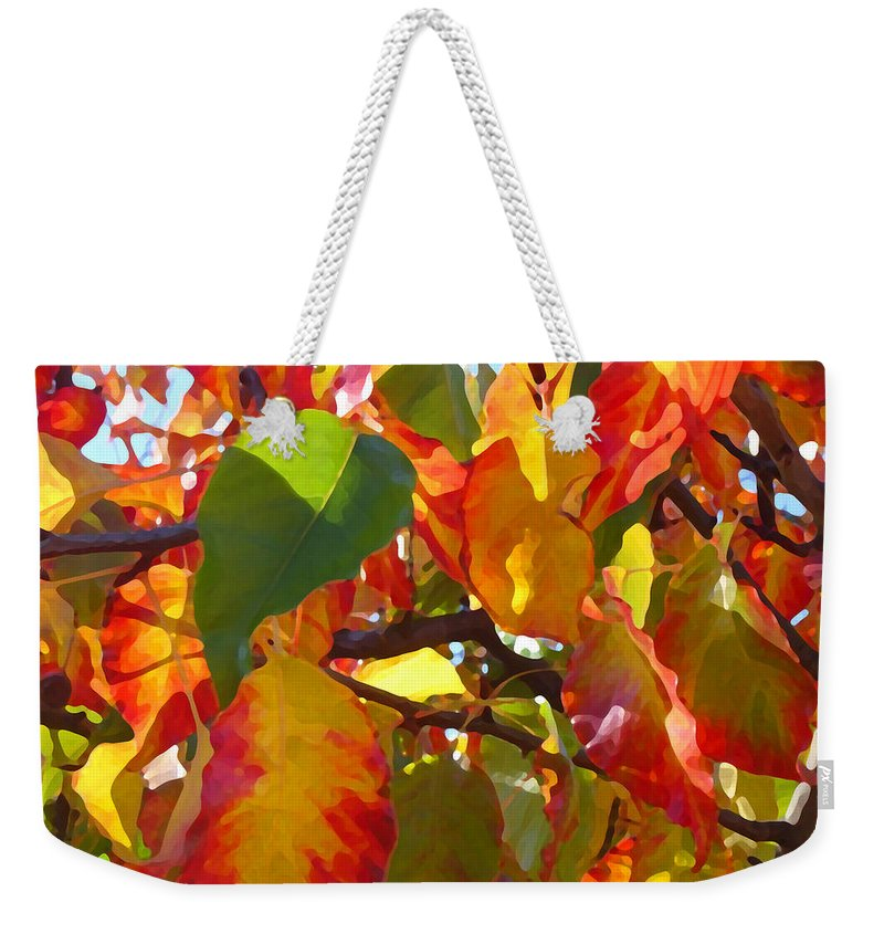 Fall Leaves Weekender Tote Bag featuring the photograph Sunlit Fall Leaves by Amy Vangsgard