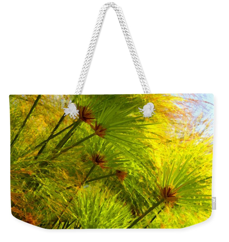 Landscape Weekender Tote Bag featuring the painting Sunlit Paparus by Amy Vangsgard