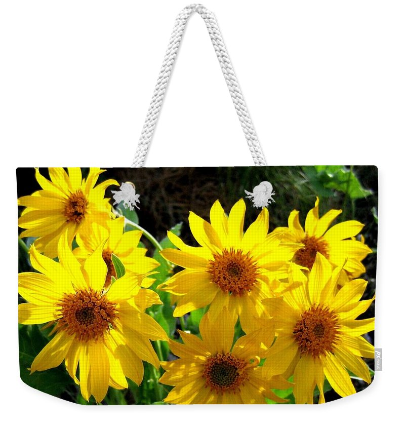 Wildflowers Weekender Tote Bag featuring the photograph Sunlit Wild Sunflowers by Will Borden