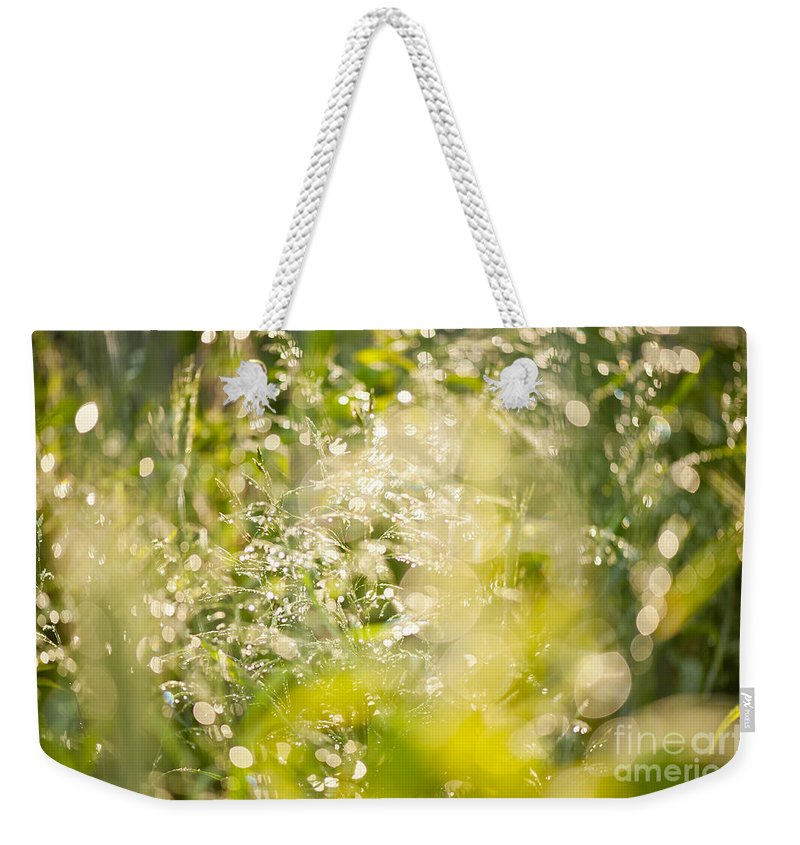 Grass Weekender Tote Bag featuring the photograph Sunny Grass After The Rain by Arletta Cwalina