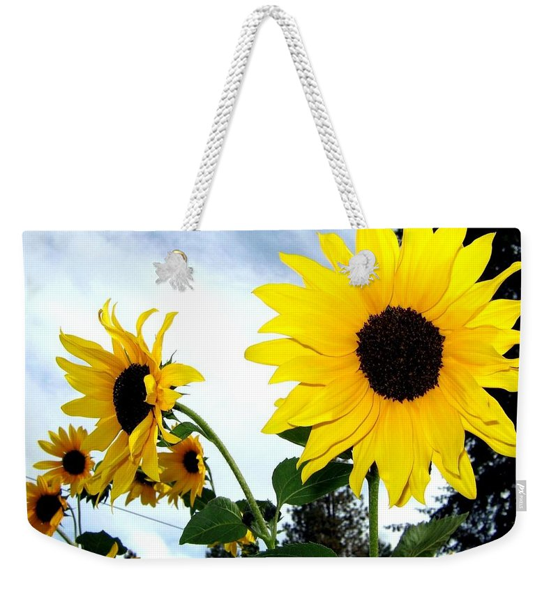 Sunflowers Weekender Tote Bag featuring the photograph Sunny Slopes by Will Borden