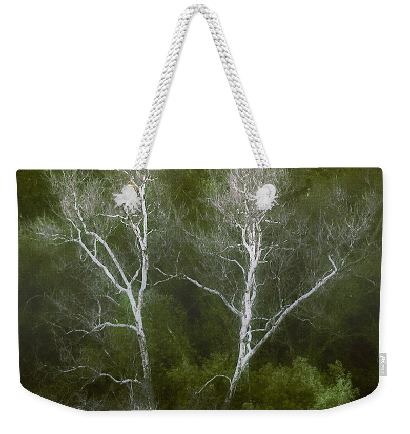 Landscape Weekender Tote Bag featuring the photograph Sunol - Twins by Karen W Meyer