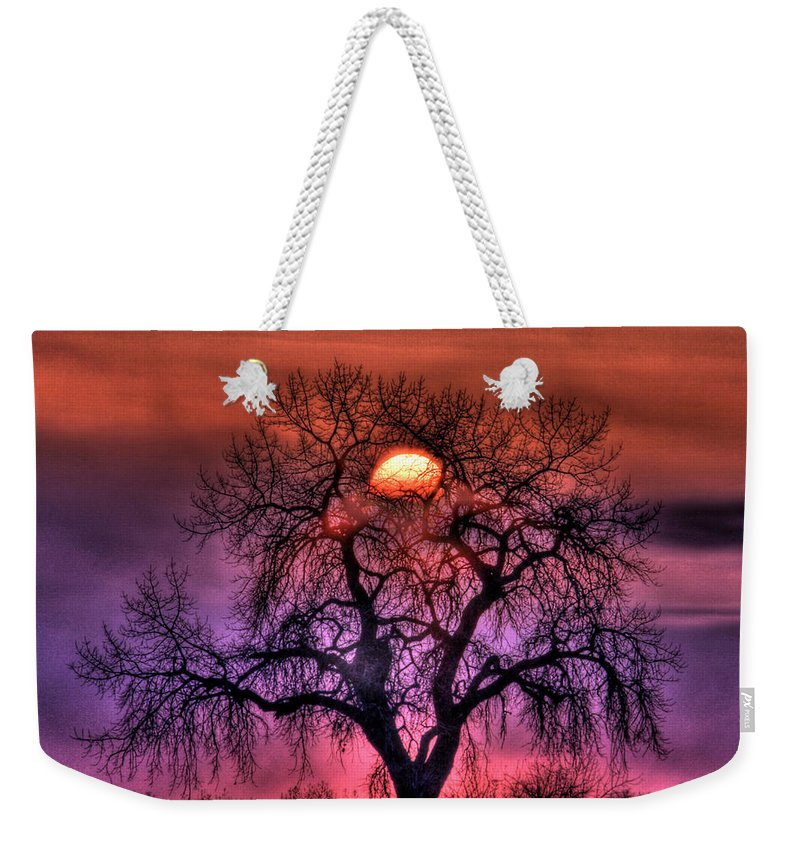 Sunrise Weekender Tote Bag featuring the photograph Sunrise Through The Foggy Tree by Scott Mahon