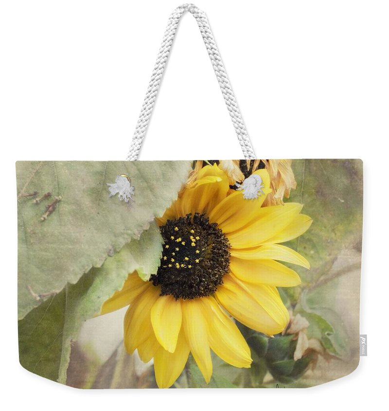 Sunflower Weekender Tote Bag featuring the photograph Last Sunflower by Cindy Garber Iverson