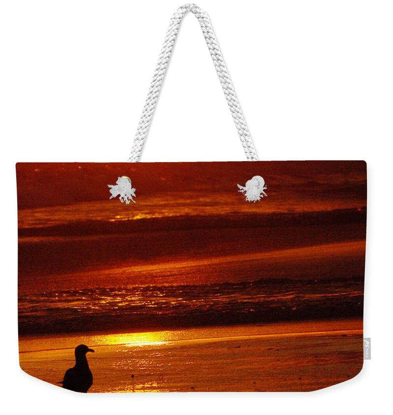 Sunset Weekender Tote Bag featuring the photograph Sunset Bird 2 by Jill Reger