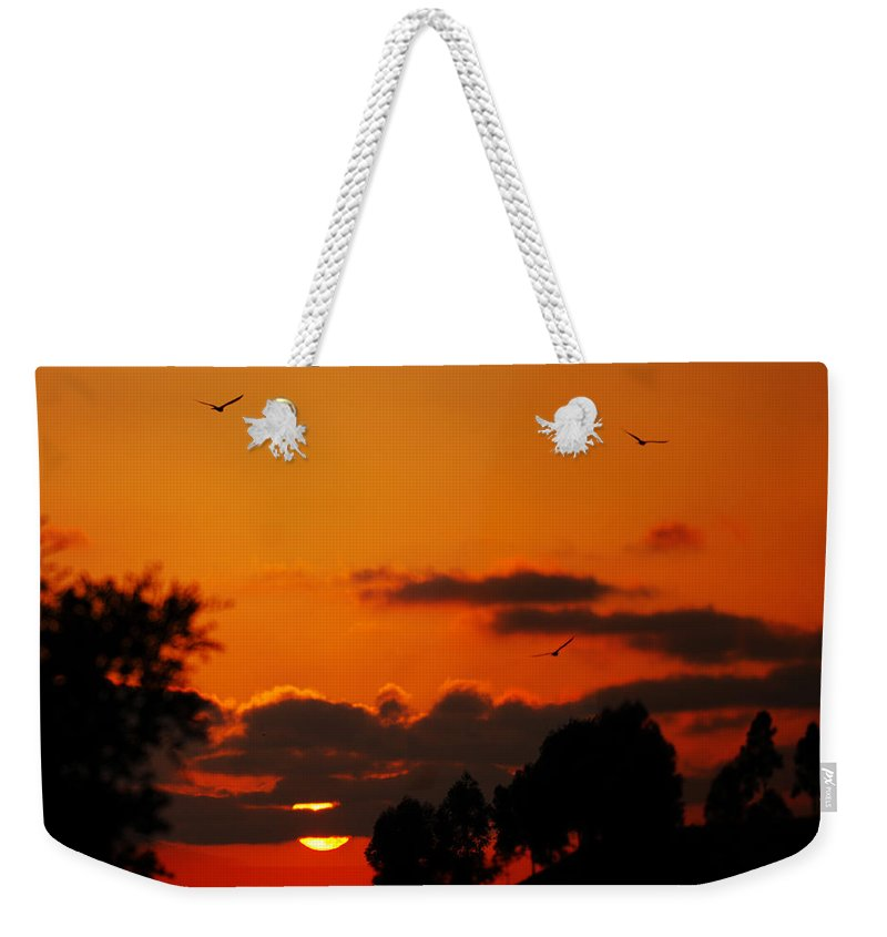 Sunset Weekender Tote Bag featuring the photograph Sunset Birds by Jill Reger