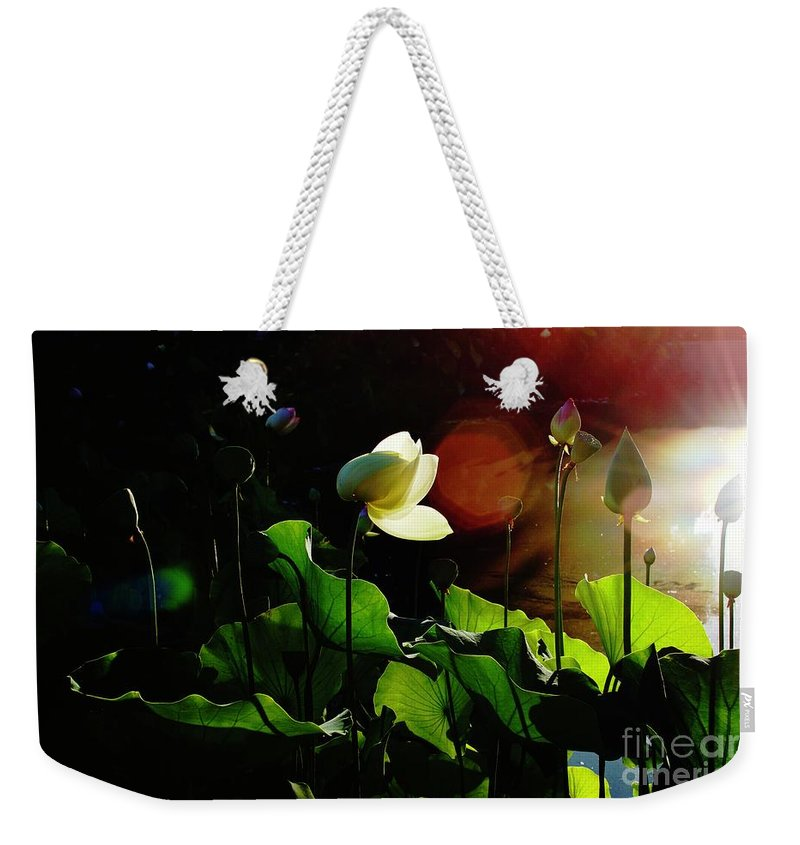 Drama Weekender Tote Bag featuring the photograph Sunset Drama by Collective Seventy