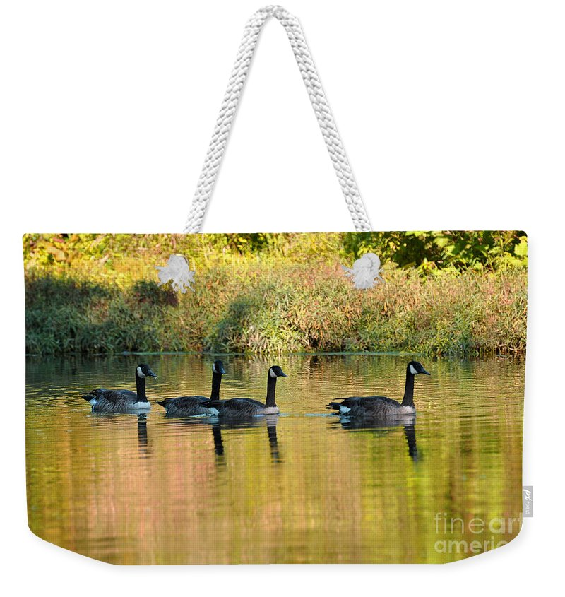 Geese Weekender Tote Bag featuring the photograph Sunset Goose by Todd Hostetter