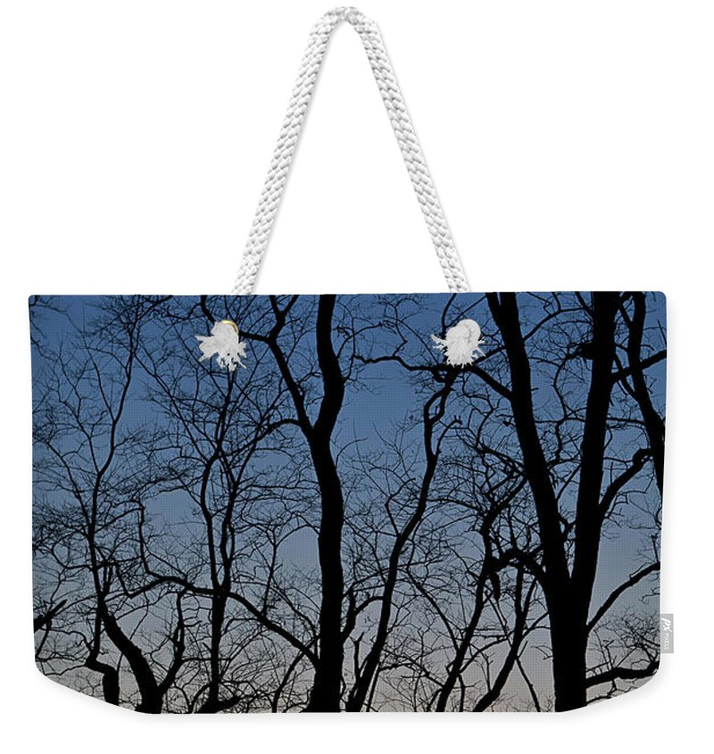 Tree Weekender Tote Bag featuring the photograph Sunset Silhouette by Steve Gadomski