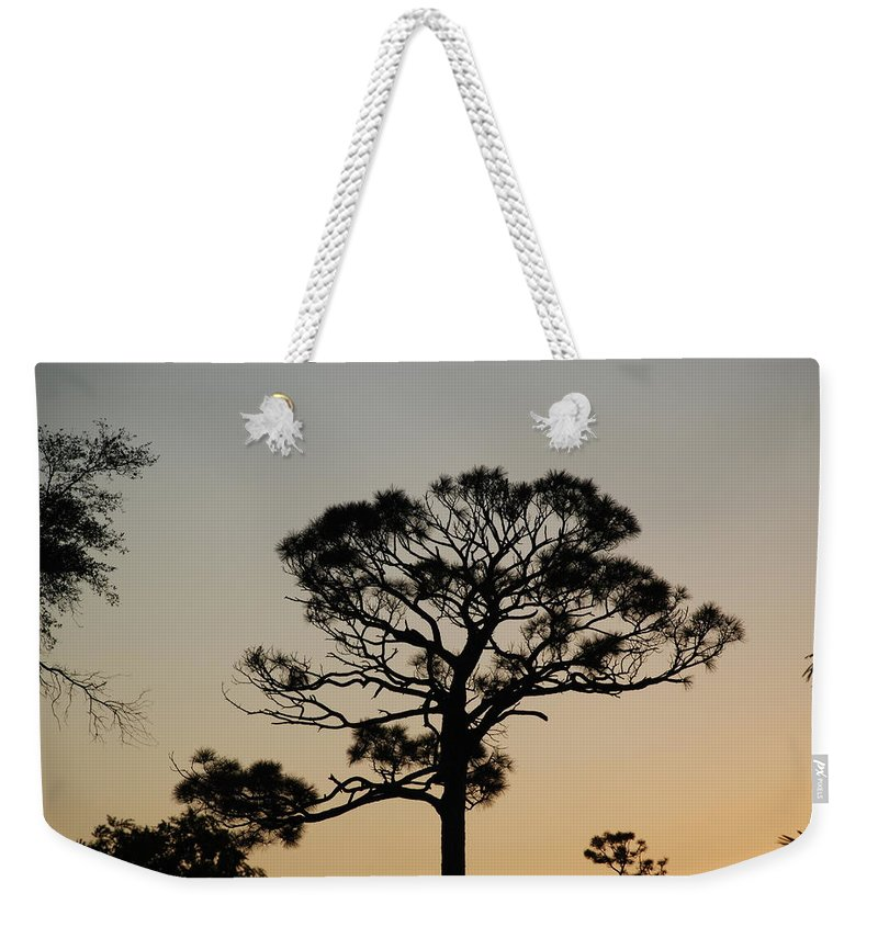 Tree Weekender Tote Bag featuring the photograph Sunsetting Thru The Trees by Rob Hans