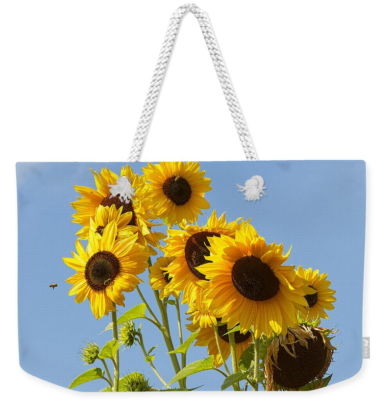 Sunflowers Weekender Tote Bag featuring the photograph Sunshine Happy by Sharon Talson