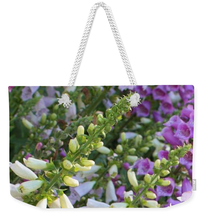 Foxgloves Weekender Tote Bag featuring the photograph Sunshine On Foxgloves by Carol Groenen