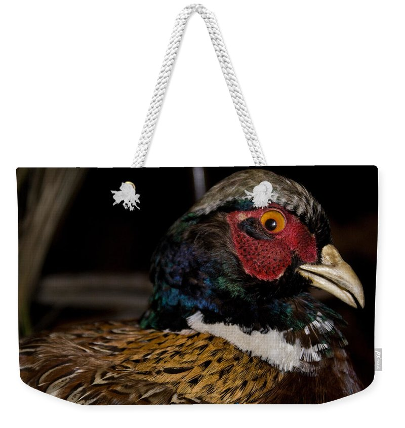 Phaseant Weekender Tote Bag featuring the photograph Surprise by Douglas Barnett