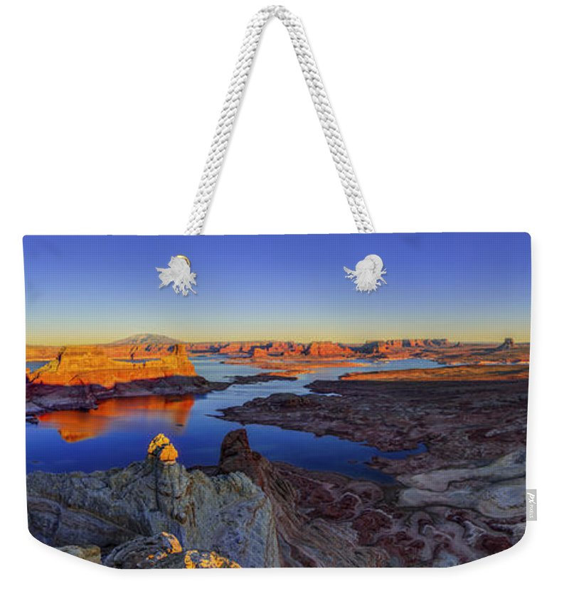 Nature Weekender Tote Bag featuring the photograph Surreal Alstrom by Chad Dutson