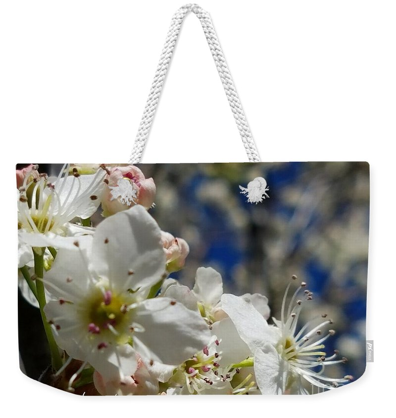 Surrounding Beauty Weekender Tote Bag featuring the photograph Surrounding Beauty by Maria Urso