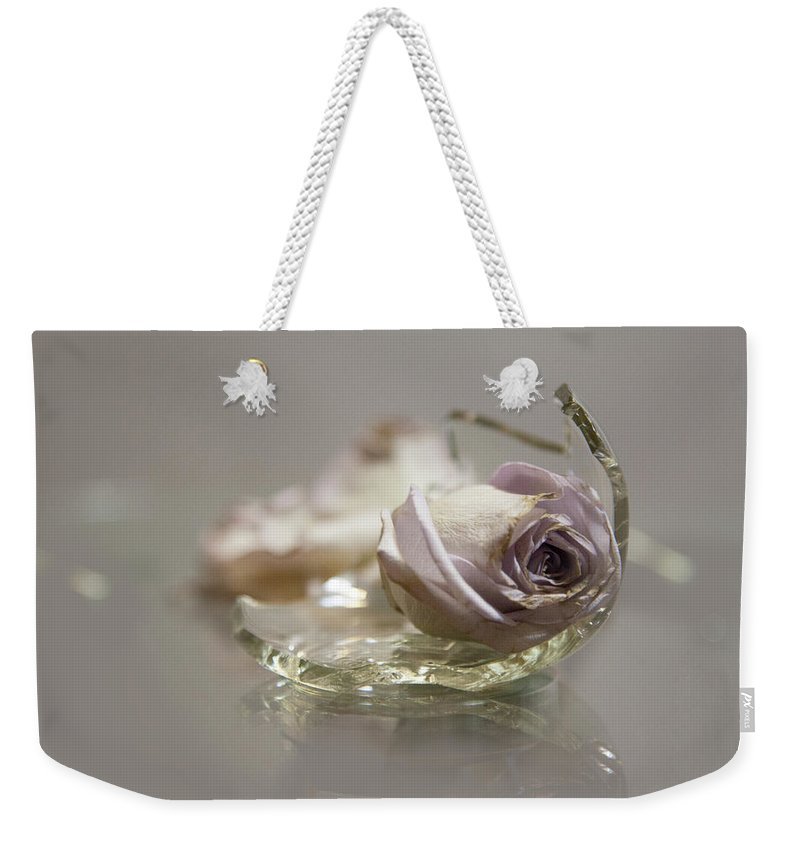 Weekender Tote Bag featuring the photograph Survival by Holly Bell
