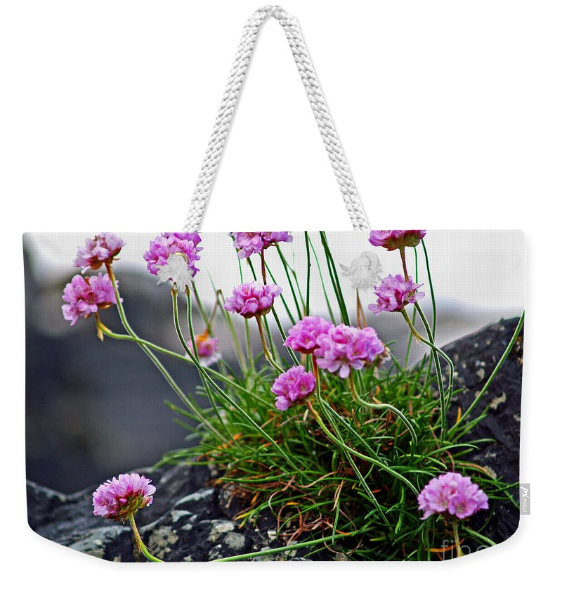 Fine Art Photography Weekender Tote Bag featuring the photograph Survival Of The Fittest by Patricia Griffin Brett