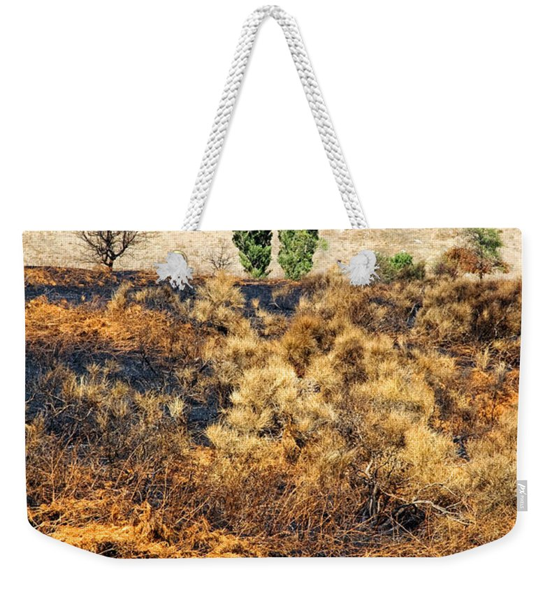 Hills Weekender Tote Bag featuring the photograph Survivors - After The Fire by Silvia Ganora