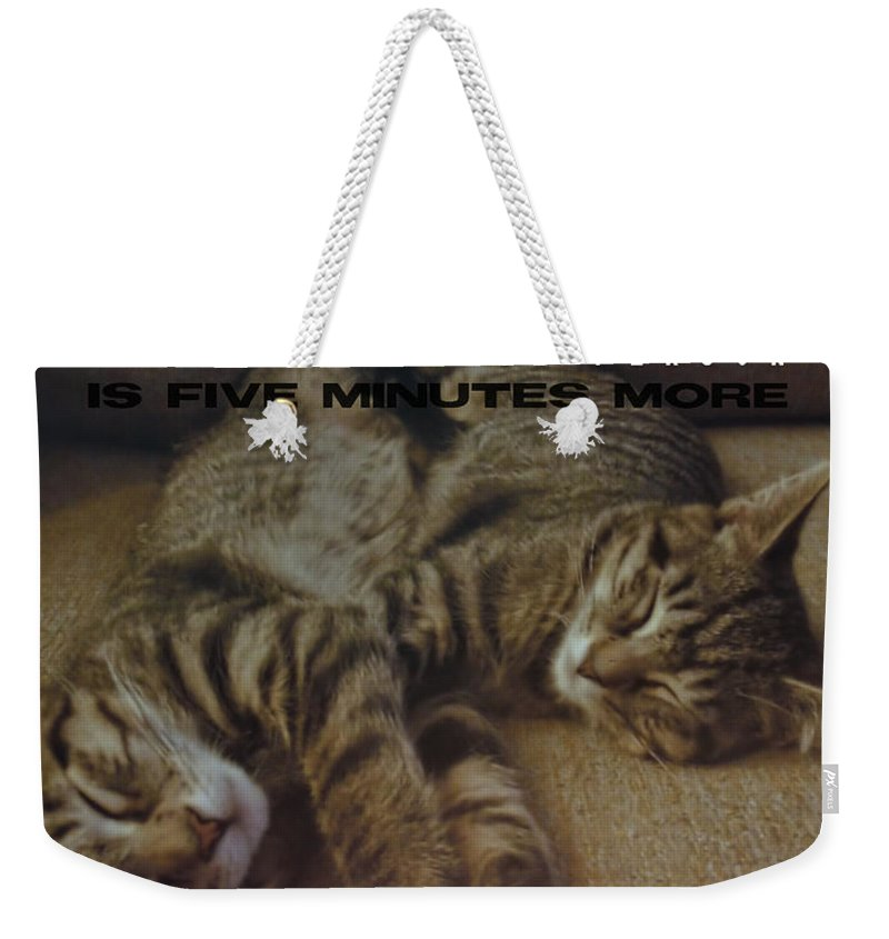 Cat Weekender Tote Bag featuring the photograph Suspension Of Consciousness Quote by JAMART Photography