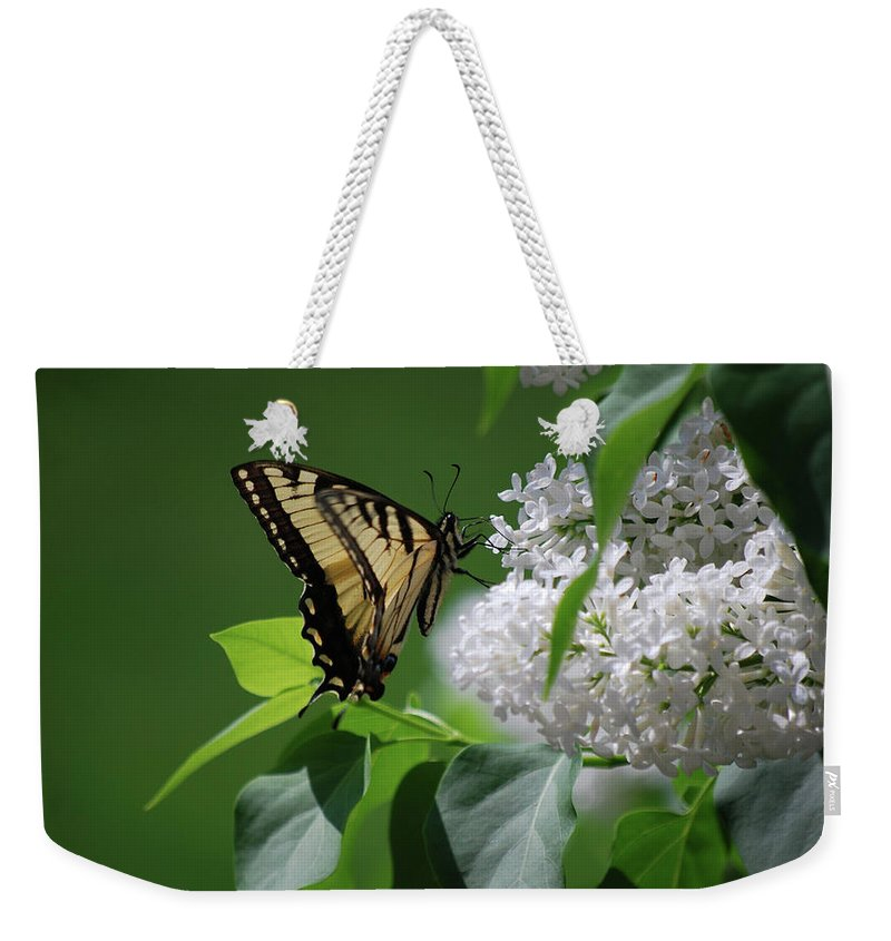 Swallowtail Weekender Tote Bag featuring the photograph Swallowtail Beauty by Lori Tambakis
