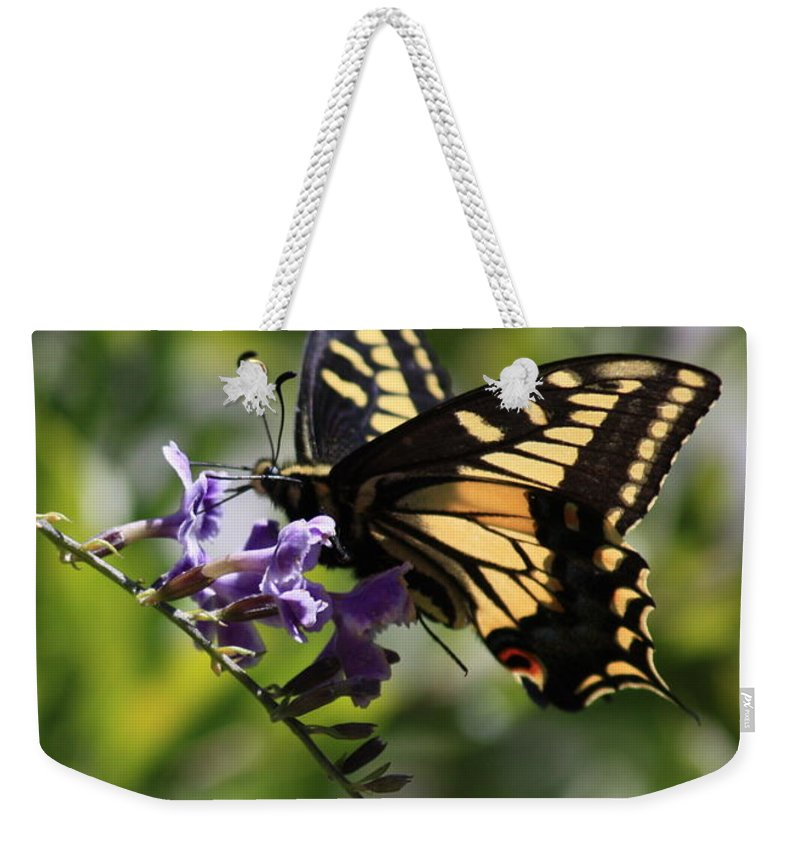 Swallowtail Butterfly Weekender Tote Bag featuring the photograph Swallowtail Butterfly 1 by Carol Groenen