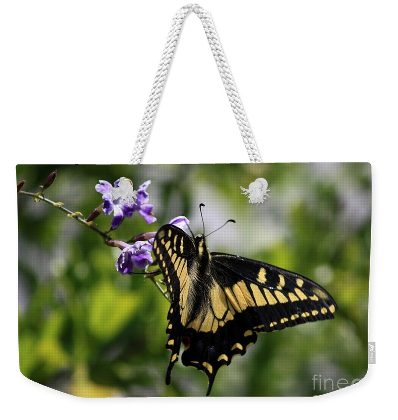 Swallowtail Butterfly Weekender Tote Bag featuring the photograph Swallowtail Butterfly 2 by Carol Groenen