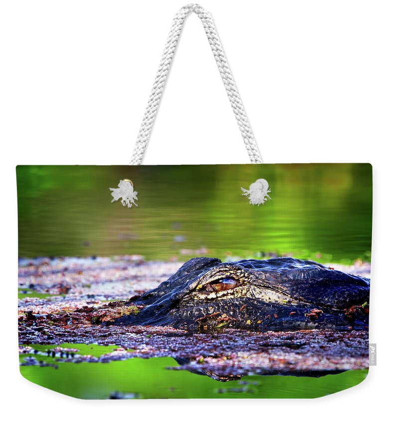 Alligator Weekender Tote Bag featuring the photograph Swamp Patrol by Mark Andrew Thomas