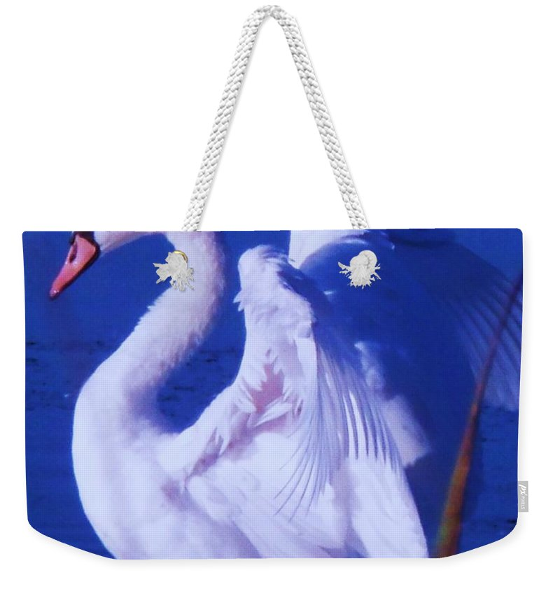 Cape Weekender Tote Bag featuring the painting Swan At Cape May Point State Park by Eric Schiabor