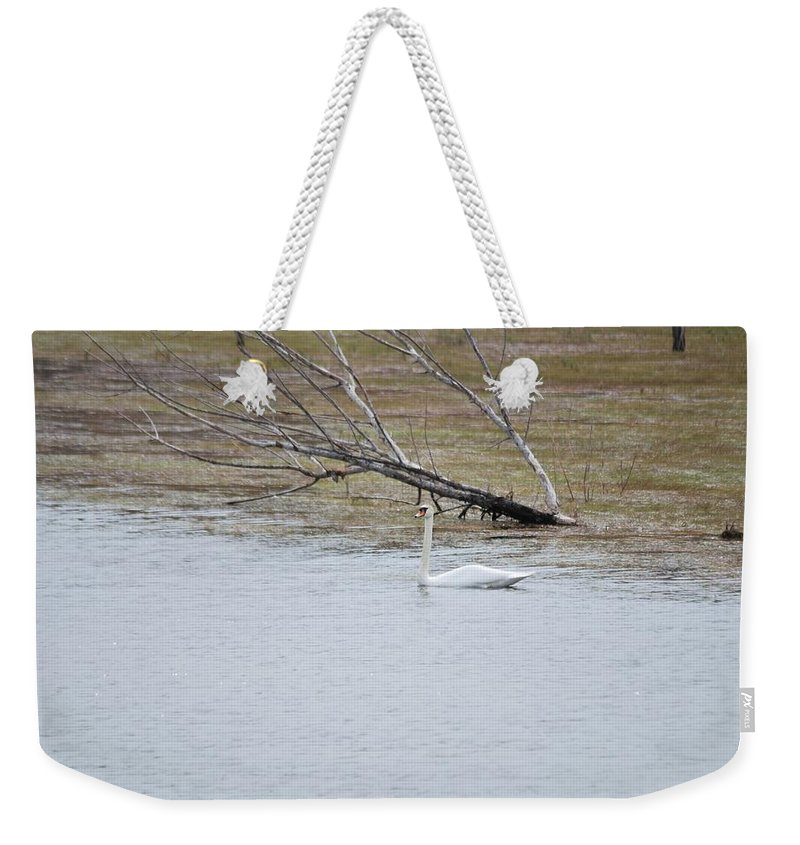 Swan Weekender Tote Bag featuring the drawing Swan by Constantin Musat