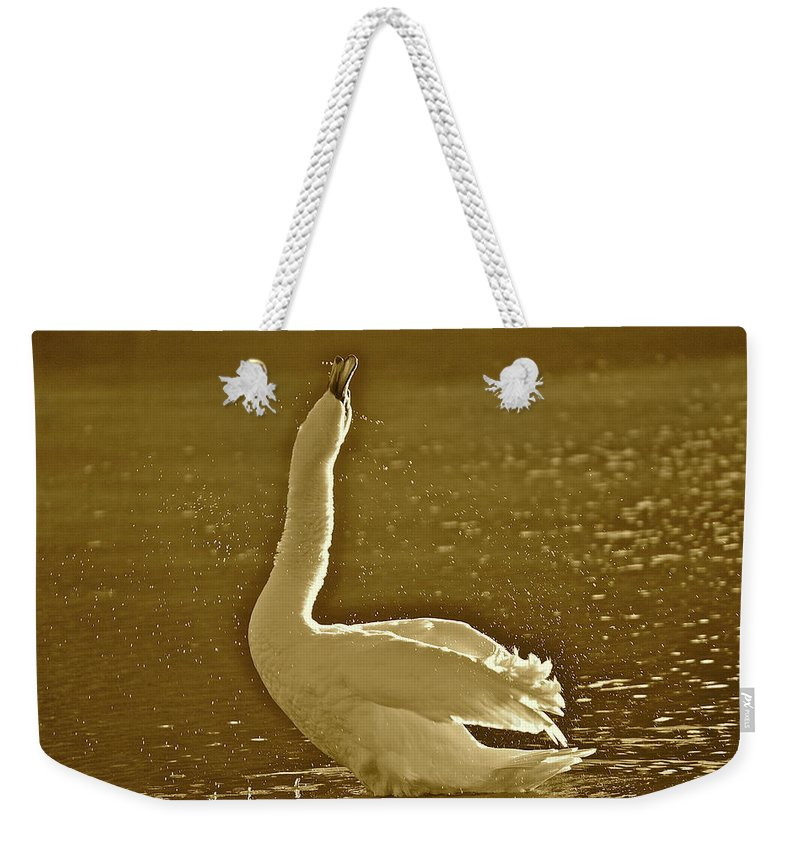 Swan Weekender Tote Bag featuring the photograph Swan Lake by Diana Hatcher