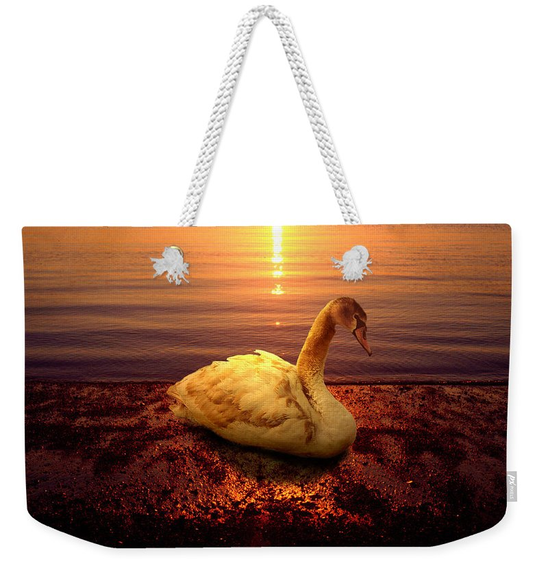 Animal Weekender Tote Bag featuring the photograph Swan Lake by Yuri Lev