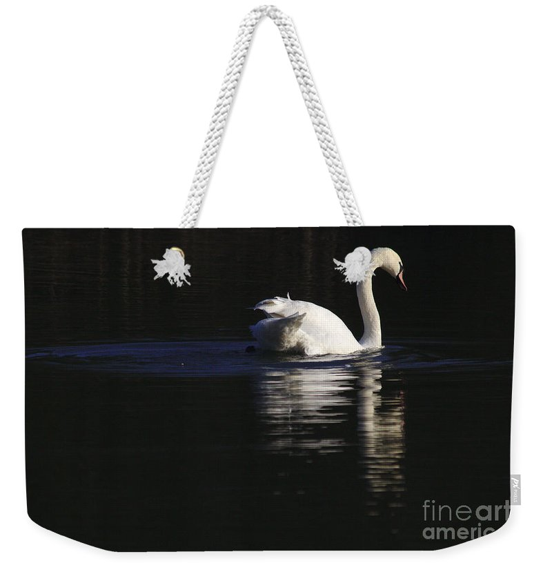 St James Lake Weekender Tote Bag featuring the photograph Swan Reflected by Jeremy Hayden