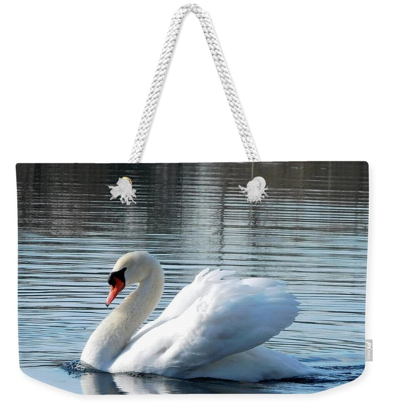 Nature Weekender Tote Bag featuring the photograph Swan Song by Barb Montanye Meseroll