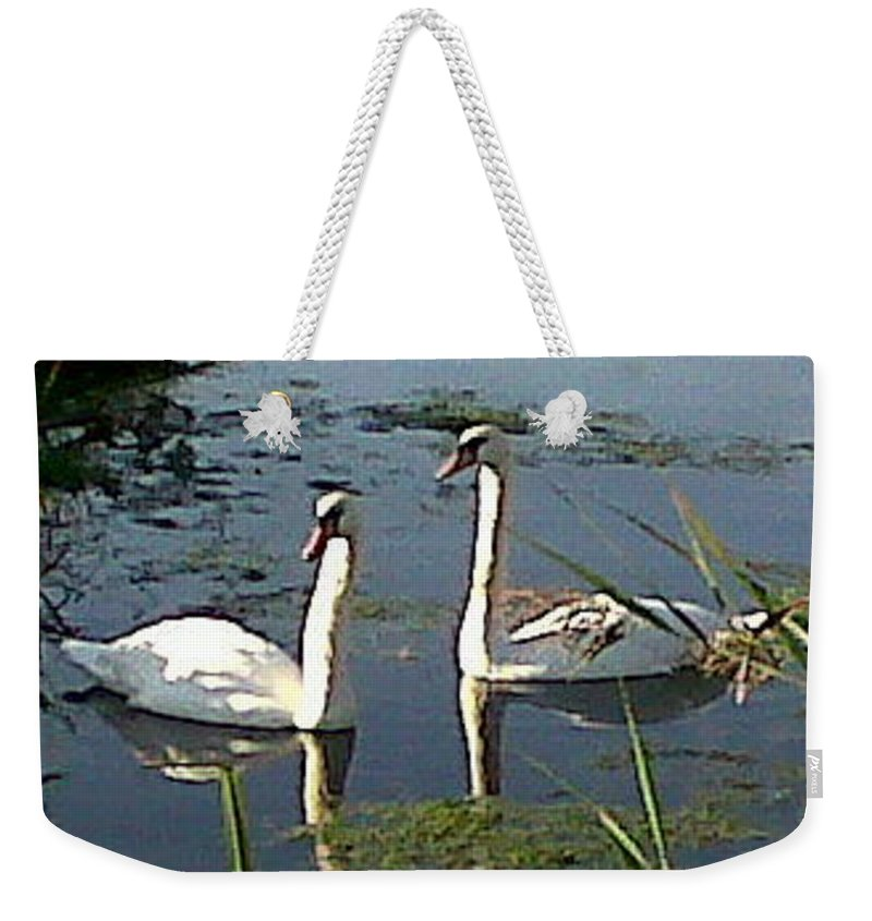 Swans Weekender Tote Bag featuring the photograph Swans In The Sunshine by Susan Baker