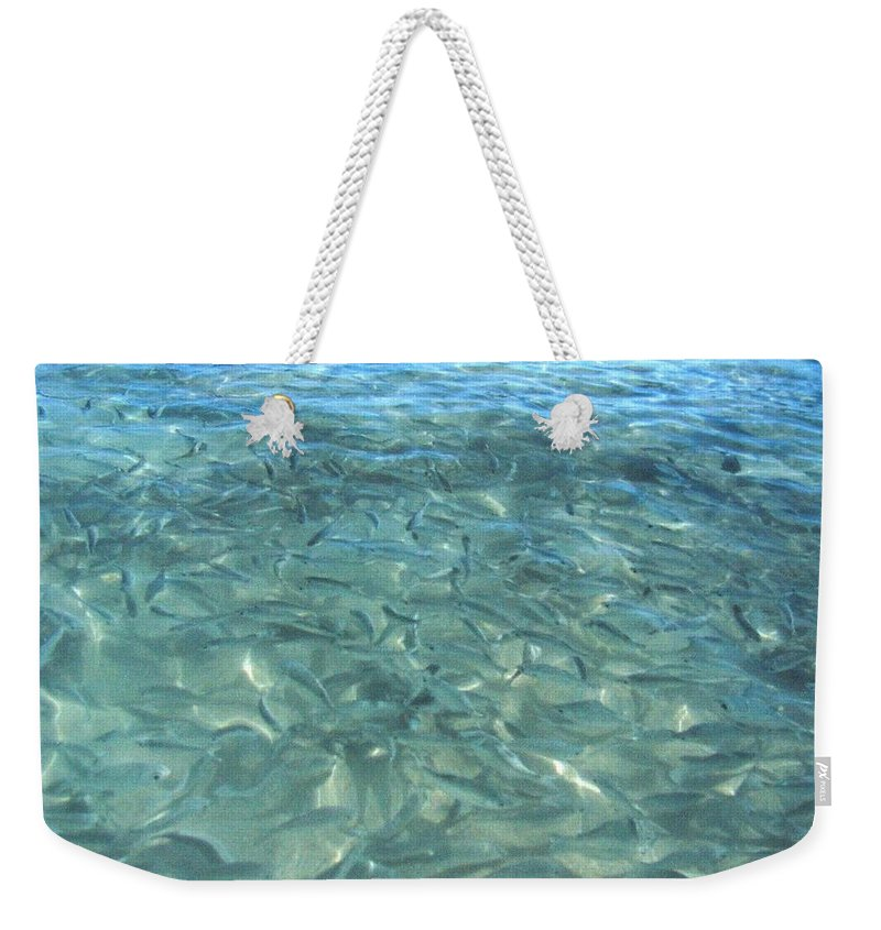 1986 Weekender Tote Bag featuring the photograph Swarming Fish by Will Borden