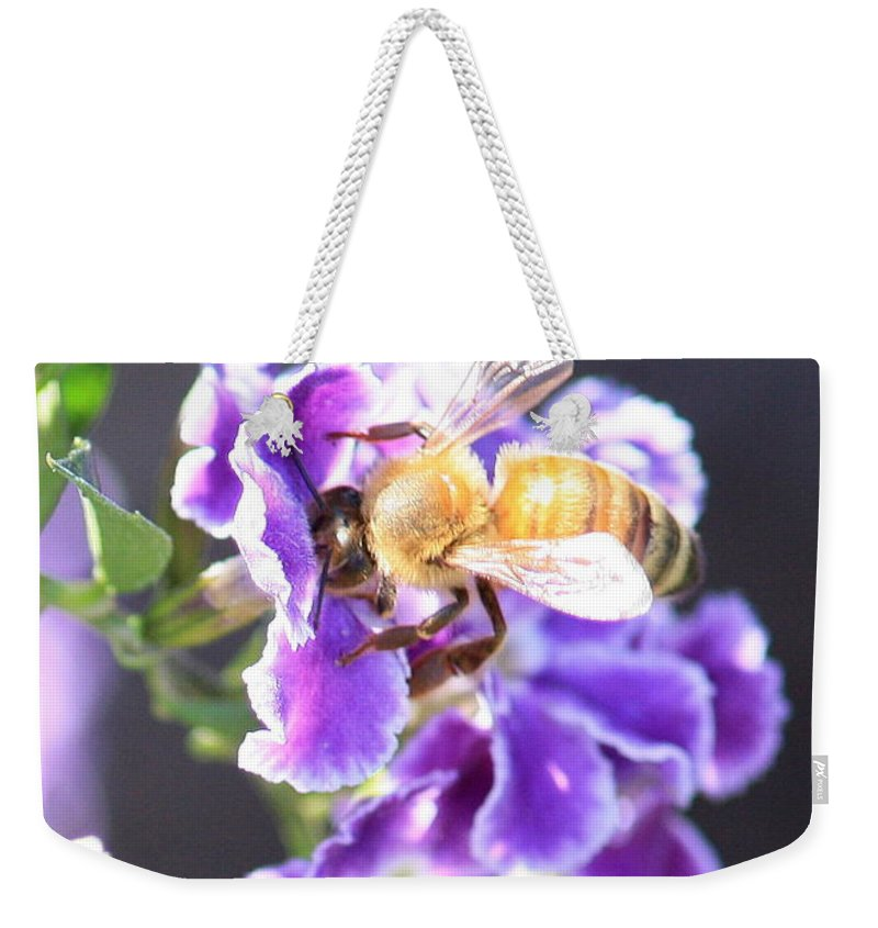 Bee Weekender Tote Bag featuring the photograph Sweet Bee by Carol Groenen