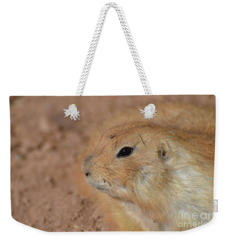 Prairie-dog Weekender Tote Bag featuring the photograph Sweet Face Of A Prairie Dog Up Close And Personal by DejaVu Designs