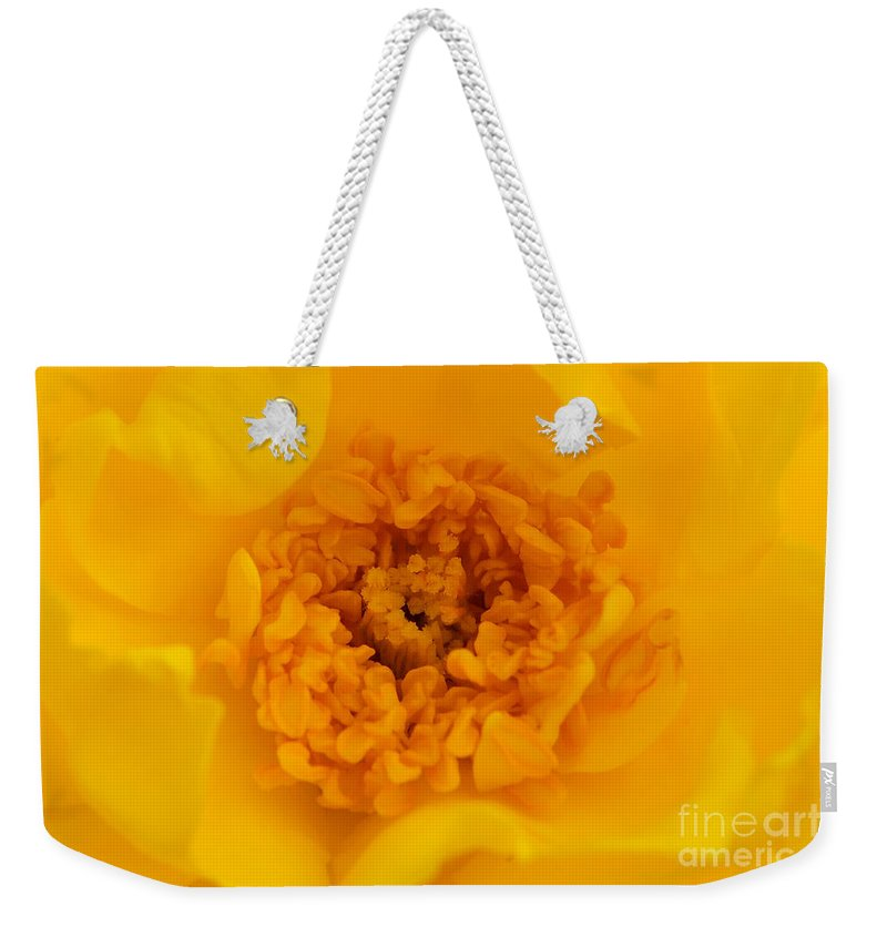 Yellow Weekender Tote Bag featuring the photograph Sweet Heart Of Yellow Rose by Olga Hamilton
