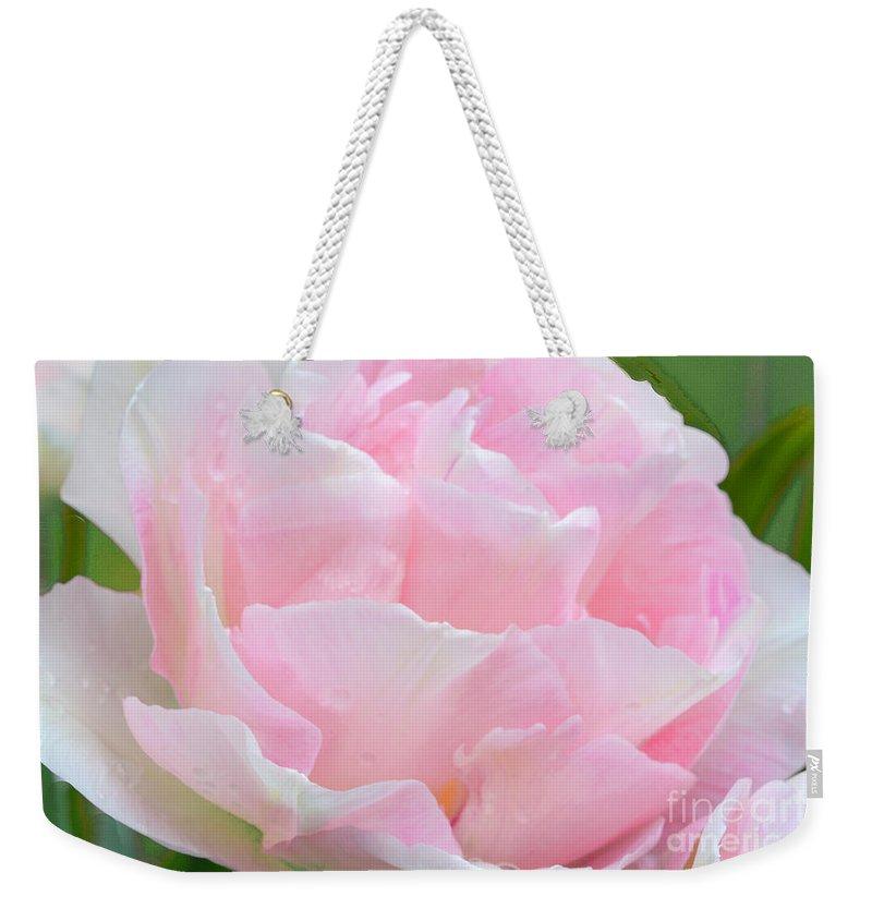 Tulip Weekender Tote Bag featuring the photograph Sweet Pink Tulip by Regina Geoghan