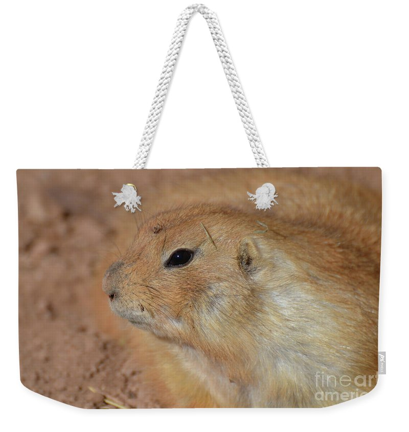 Prairie-dog Weekender Tote Bag featuring the photograph Sweet Profile Of A Prairie Dog Playing In Dirt by DejaVu Designs
